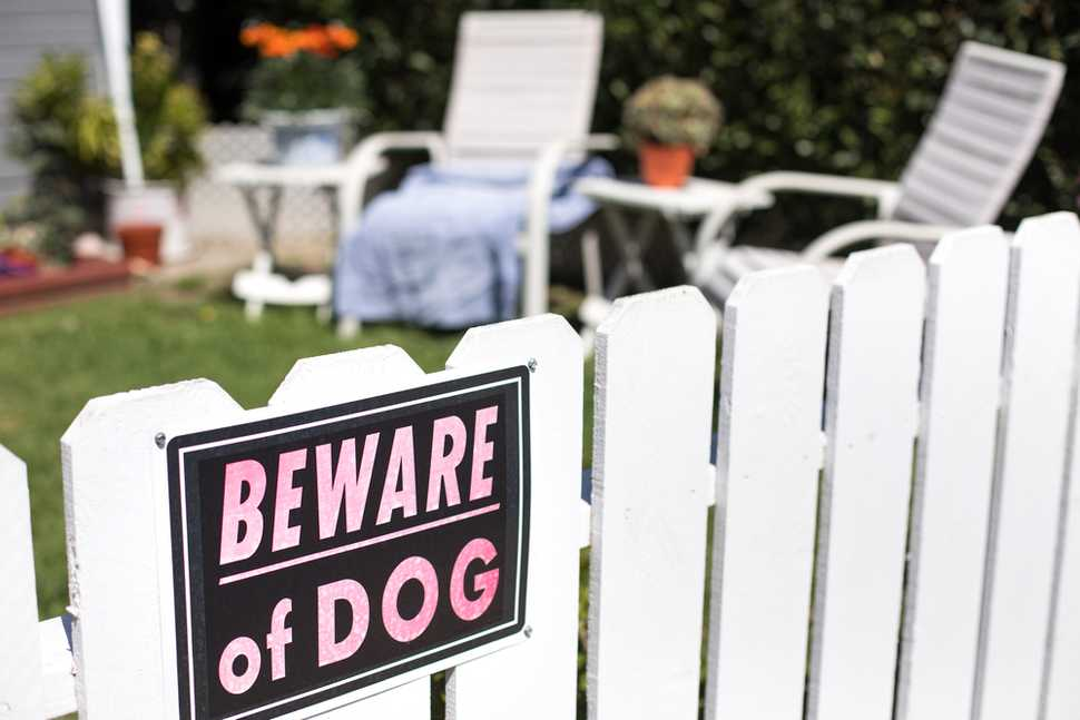 beware of dog sign white fence
